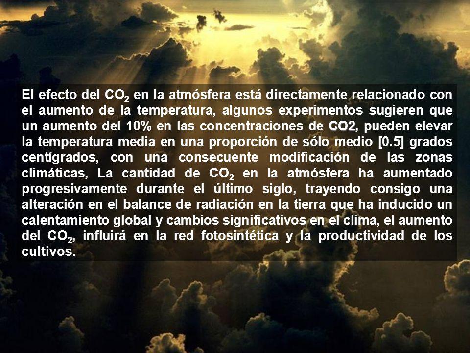 El efecto del CO2 en la atmósfera está directamente relacionado con el aumento de la temperatura, algunos experimentos sugieren que un aumento del 10% en las concentraciones de CO2, pueden elevar la temperatura media en una proporción de sólo medio [0.5] grados centígrados, con una consecuente modificación de las zonas climáticas, La cantidad de CO2 en la atmósfera ha aumentado progresivamente durante el último siglo, trayendo consigo una alteración en el balance de radiación en la tierra que ha inducido un calentamiento global y cambios significativos en el clima, el aumento del CO2, influirá en la red fotosintética y la productividad de los cultivos.